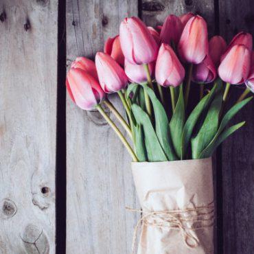 Blomenhus_frische-Blumen